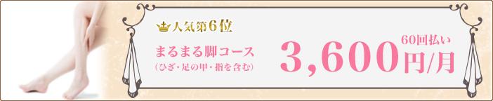 【人気第6位】まるまる脚コース