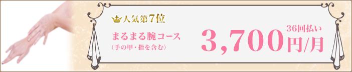 【人気第7位】まるまる腕コース